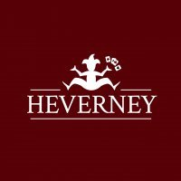 Heverney: Brand card games poker chips and case.